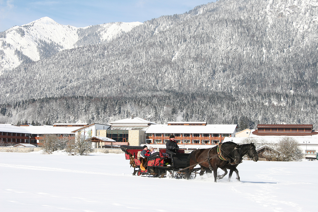 Horse and Carriage_WINTER.jpg