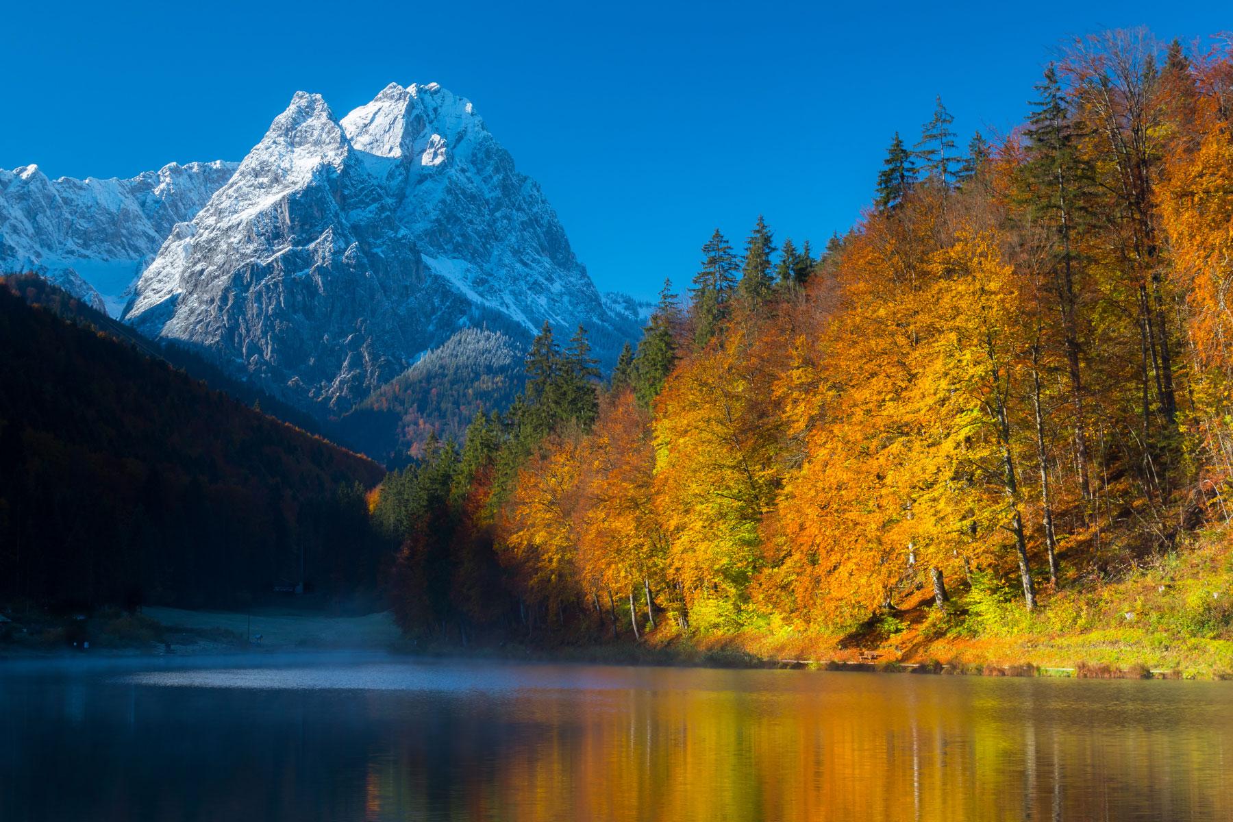 Fall_.jpg